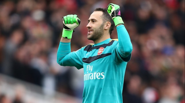 LONDON, ENGLAND - APRIL 02: David Ospina of Arsenal celebrates his team's third goal during the Barclays Premier League match between Arsenal and Watford at Emirates Stadium on April 2, 2016 in London, England. (Photo by Julian Finney/Getty Images)