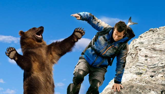 This is how Bear Grylls deals with a man attacking him dressed as a bear Credit: Getty Images/REX/Metro