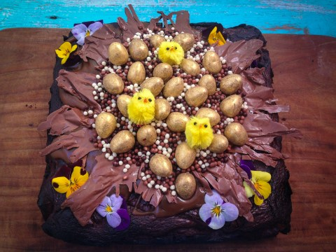 Spring baking recipe: Triple chocolate and toffee bird's nest brownies