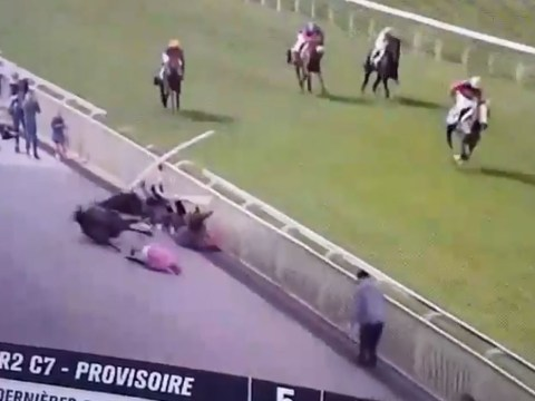 Horse put down after bolting over safety barrier and ploughing into crowd