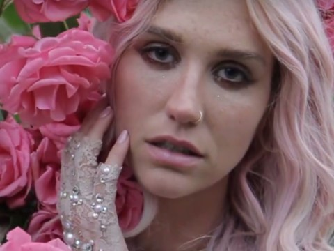 Kesha shares comeback track True Colours while Dr Luke hits back at her collaborator Zedd on Twitter