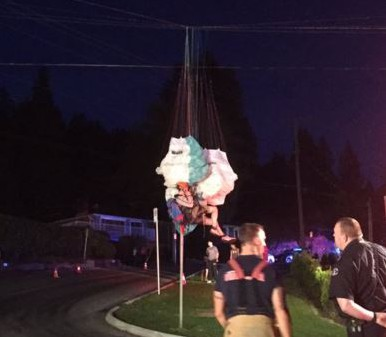 Paraglider gets stuck in some power lines, causes massive outage