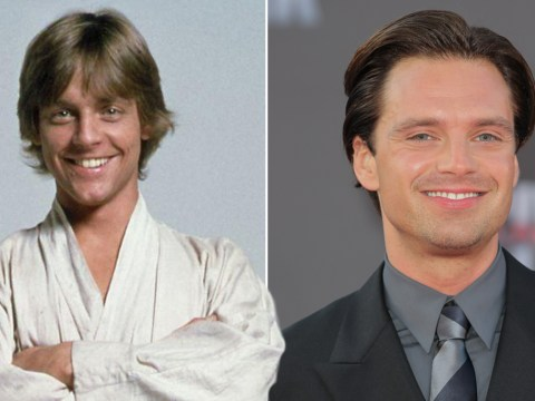 Twitter is loving how much Sebastian Stan looks like a young Luke Skywalker