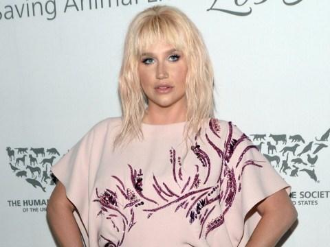 'Kiss my magical imperfect ass!': Beach bum Kesha moons her body-shaming online troll