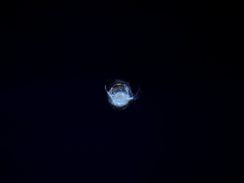 Something cracked the window of the International Space Station