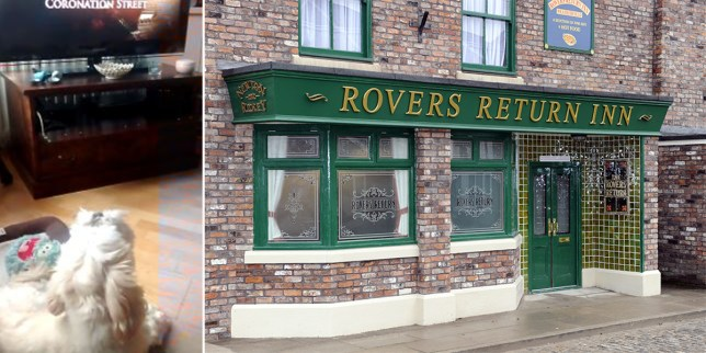 Mandatory Credit: Photo by McPix Ltd/REX/Shutterstock (3397261m) The Rovers Return Inn New Coronation Street set launch, Media City, Salford, Manchester, Britain - 29 Nov 2013