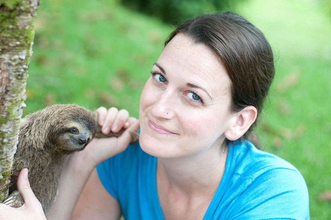 There's a sloth institute that looks after baby sloths who have lost their mums Credit: Sam Trull/ The Sloth Institute