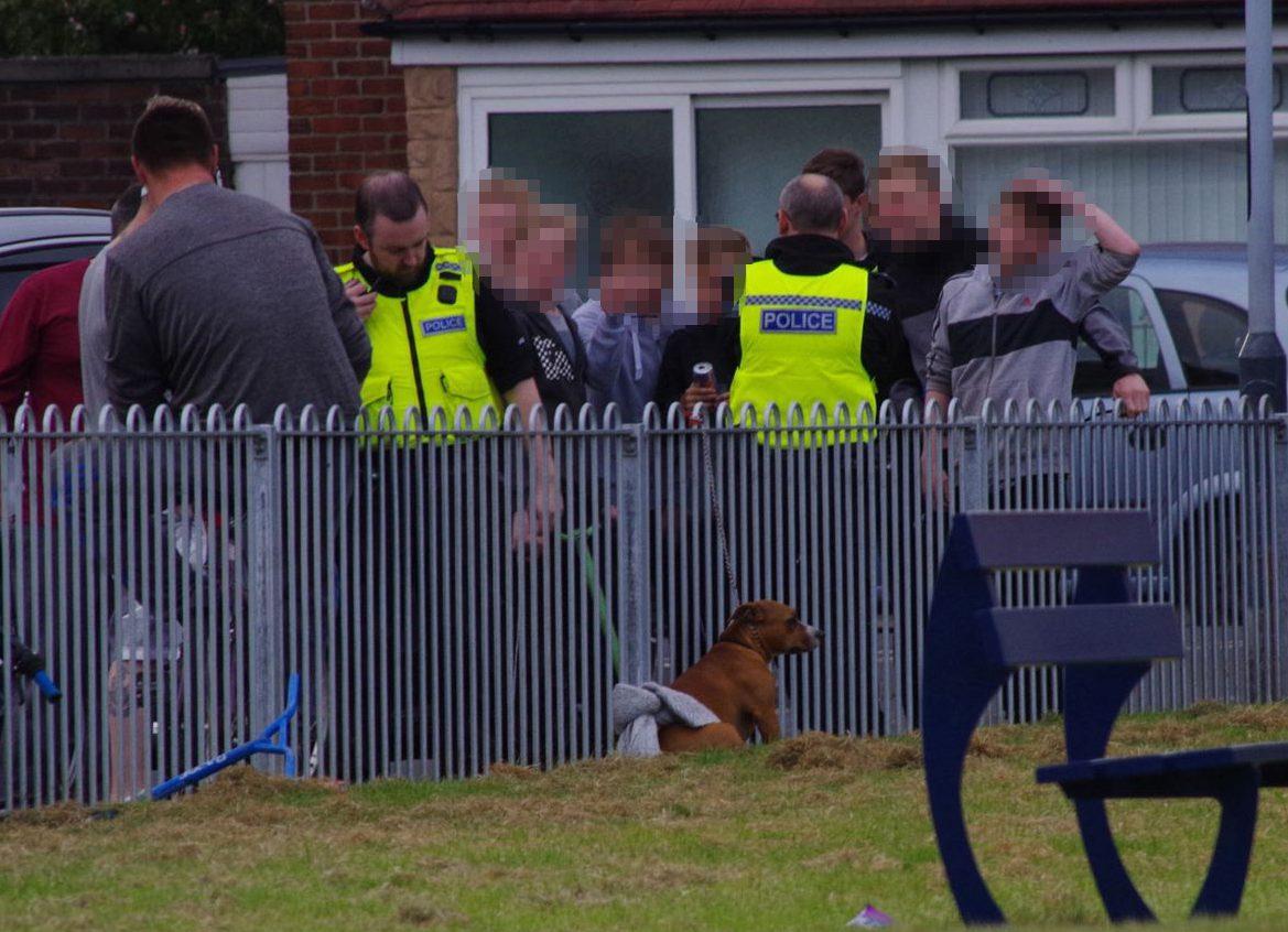 John Tuttiett Multiple children injured after dog goes on rampage through park