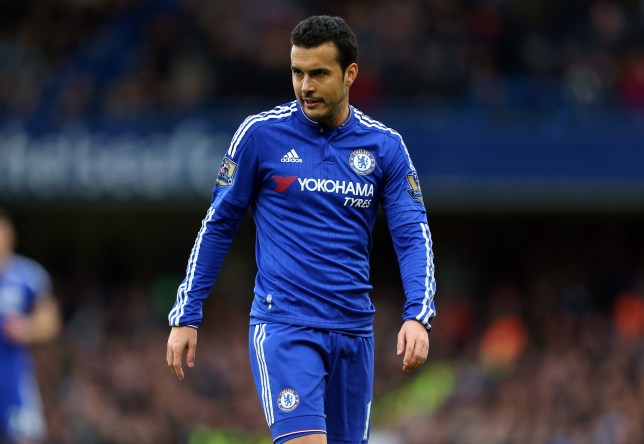 LONDON, ENGLAND - MARCH 19 : Pedro of Chelsea during the Barclays Premier League match between Chelsea and West Ham United at Stamford Bridge on March 19, 2016 in London, England. (Photo by Catherine Ivill - AMA/Getty Images)