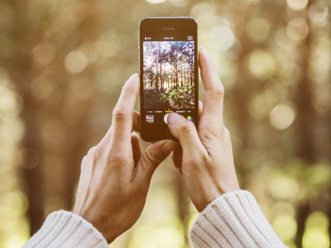 How Instagramming every moment of your existence could be making you happier