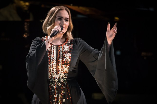 Adele has taken new measures to avoid falling ill during her Live World Tour (Picture: Getty Images)