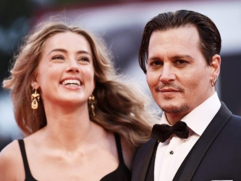 Johnny Depp and Amber Heard face court battle over dogs Pistol and Boo