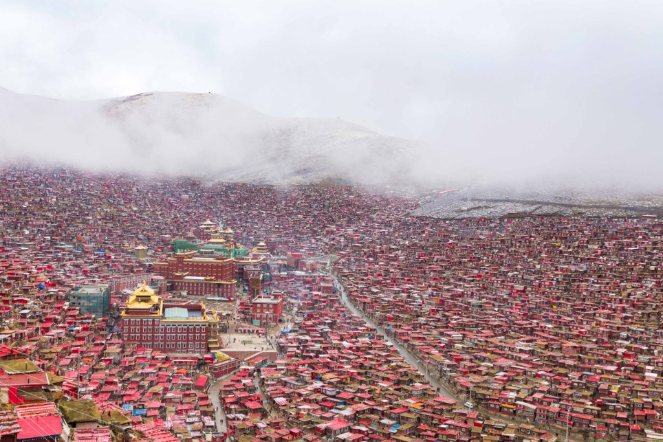 SICHUAN, CHINA: IS THIS the most densely packed student village in the world? Dizzying images of thousands of log cabins piled high along hillsides and down valley are actually student accommodation. Stretching far and wide these incredible pictures show the red orange and green decorated make shift homes of local monks and nuns tightly packed together surrounding the main university for the study of Tibetan Buddhism. Other pictures show the traditional sky burial, whereby the deceased is place inside a vessel and left for vultures to consume. Photographer Jesse Earl Rockwell (32) from Santa Barbara, California spent six days on location at Larung Gar Buddhist Institute, Gharze Prefecture, Sichuan China to photograph this incredible sprawling hillside habitation.