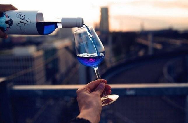 blue wine giklive