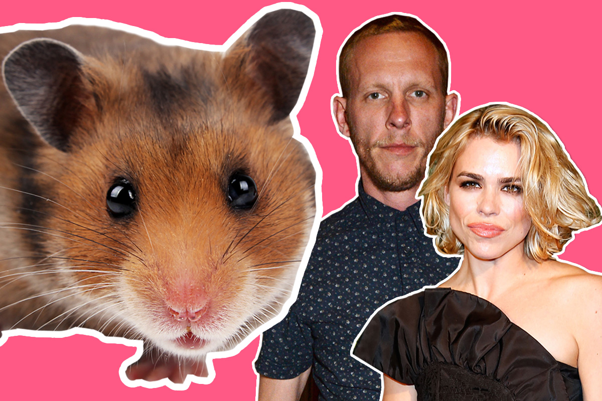 Did Laurence Fox just compare Billie Piper to a dead hamster?