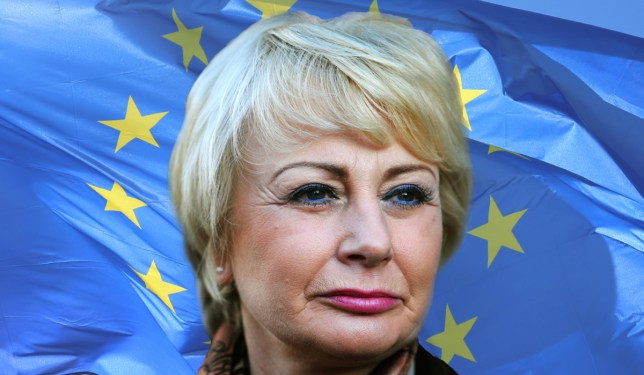 Irony is dead: Ukip MEP claims EU immunity to avoid paying libel damages Credit: PA