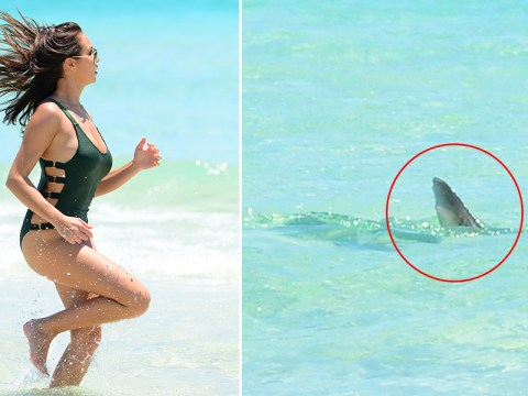 Chloe Goodman chased out of the ocean by three sharks in Miami