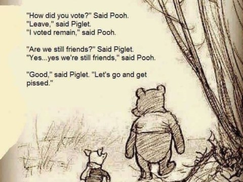 Someone made a less vomit-inducing version of that Pooh Brexit meme