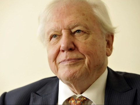 David Attenborough is saddened by Brexit