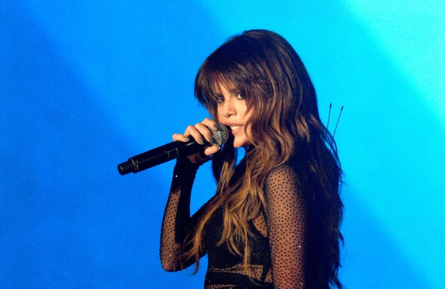 Selena Gomez Instagram picture is most liked ever, beating