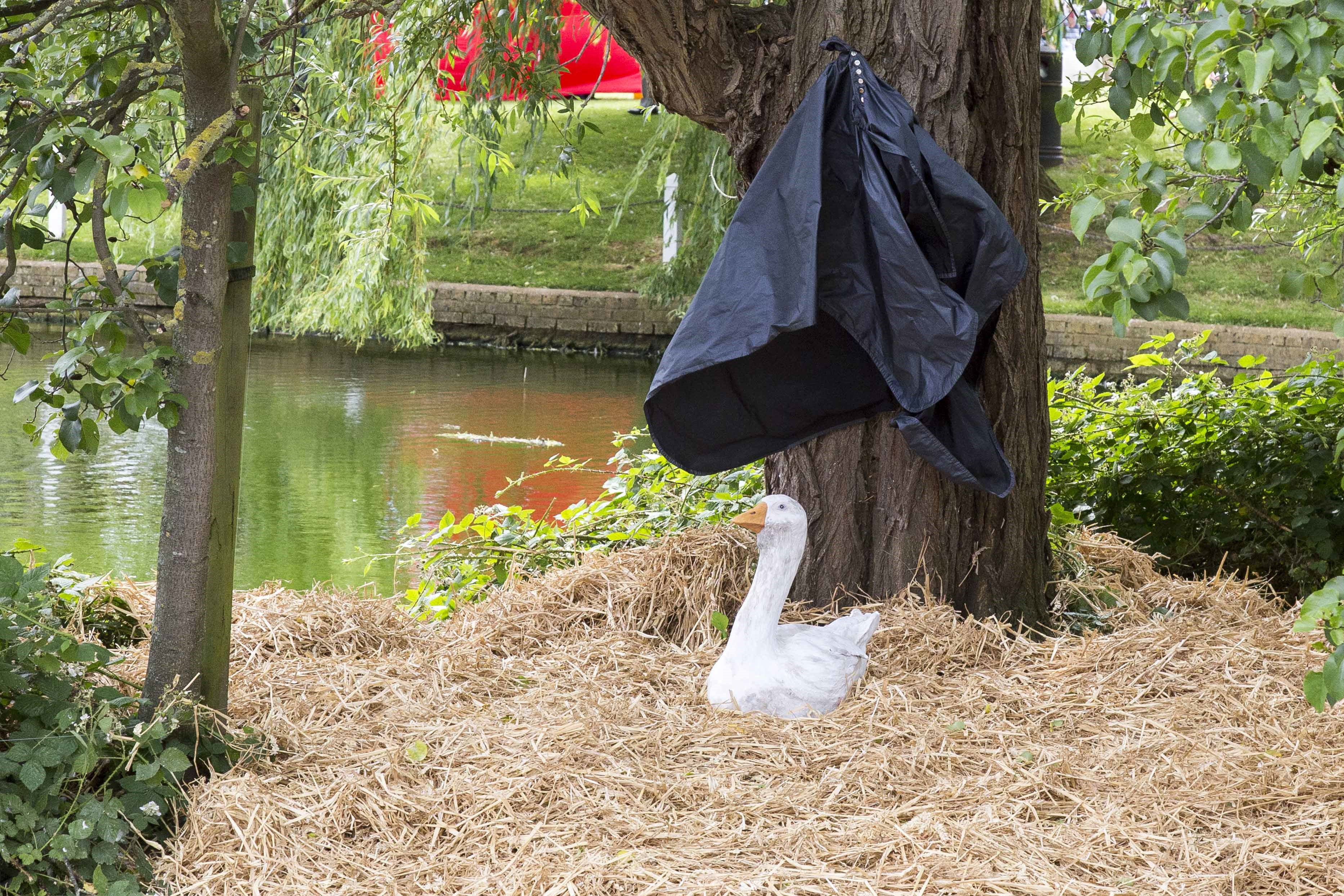 Hundreds turned out for unveiling of statue to remember a goose
