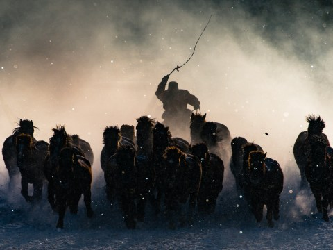 The winners of the 2016 National Geographic Travel Photographer of the Year contest are incredible