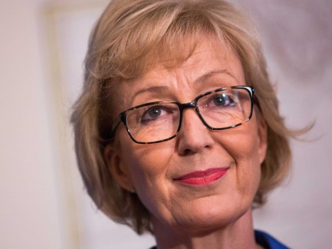 Andrea Leadsom: Brexiteer who could sneak a surprise win as prime minister