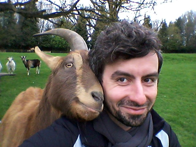 Dr Christian Nawroth Goat's could rival dogs for the title of man's best friend, according to a new study that has found they are able to communicate with humans in much the same way as our canine companions. The researchers found goats alter the way they look at humans if they want help with a problem they cannot solve themselves