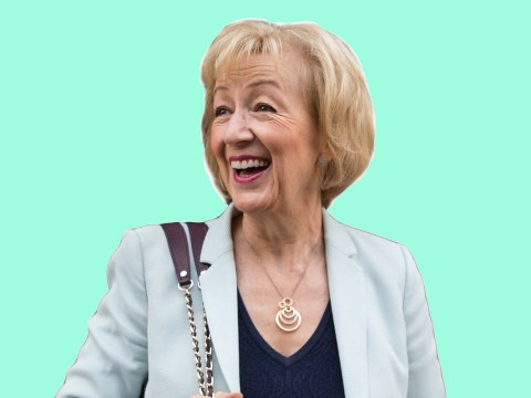 Here are some brilliantly bizarre things Andrea Leadsom believes