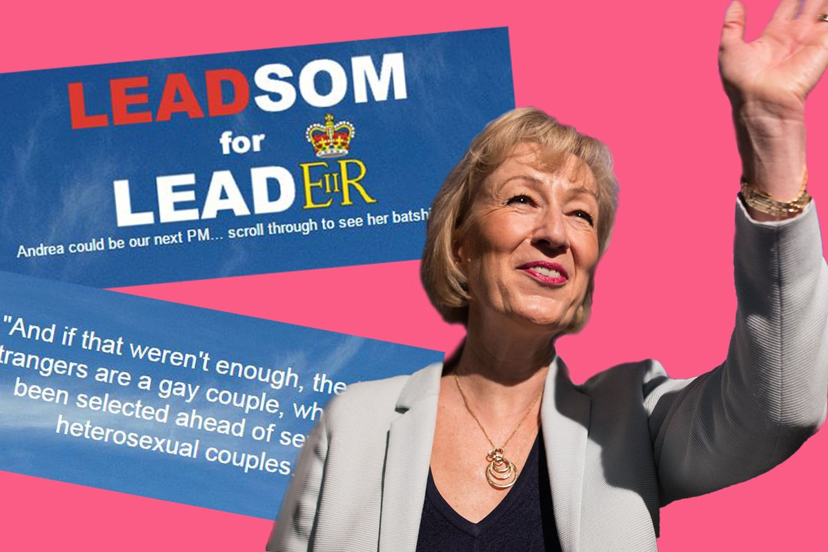 Something glorious has happened to Andrea Leadsom's websites
