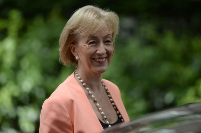 """Leadsom: male carers might be paedophiles Newly appointed British Environment, Food and Rural Affairs Secretary Andrea Leadsom leaves Downing Street in central London on July 14, 2016, as cabinet appointments by new prime minister Theresa May are made on her first full day in office. Theresa May began her first full day as British prime minister July 14 under pressure to implement Brexit, after stunning observers by picking gaffe-prone """"Leave"""" campaigner Boris Johnson as her top diplomat. / AFP PHOTO / OLI SCARFFOLI SCARFF/AFP/Getty Images"""