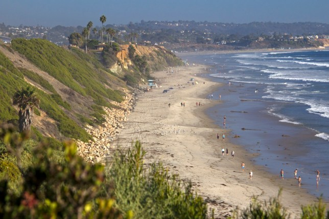 USA, California, Encinitas. Swamis, beach, Cardiff by the Sea.