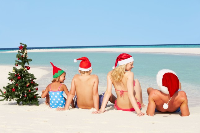 Family sitting on beach with christmas tree and hats. D7A5N2 Family Sitting On Beach With Christmas Tree And Hats