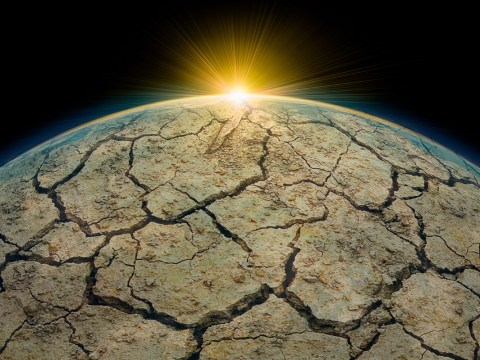 Everyone's panicking about a 'global climate emergency'