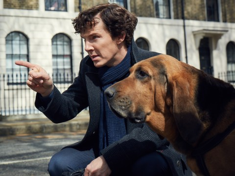 First look at series four of Sherlock promises 'ghosts of the past, romance and terror'… plus helpful dogs
