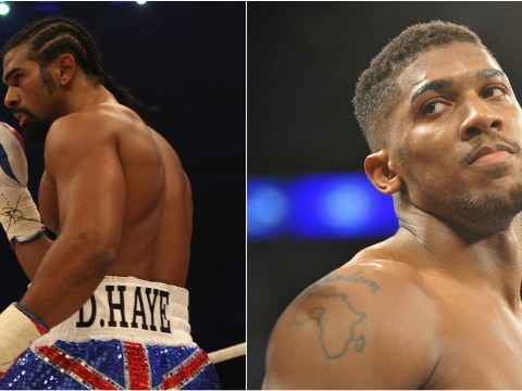 David Haye insists he is on track to reclaim his heavyweight world champion title