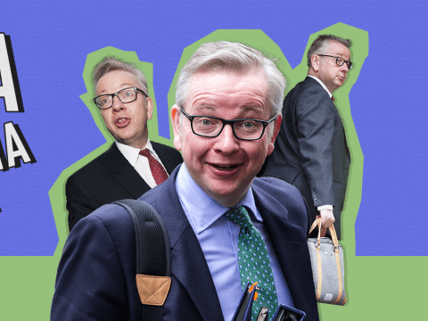 Michael Gove might have the best website of all time