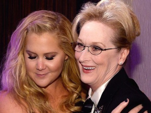 Meryl Streep has made it very clear she wants Amy Schumer to play her in a biopic