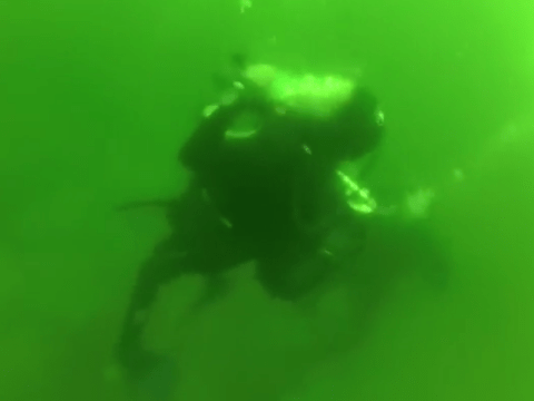Diver has panic attack and nearly drowns after spitting out breathing gear
