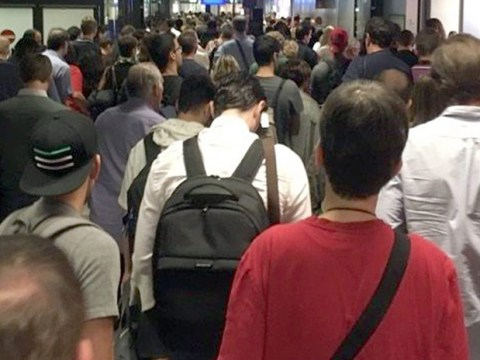 Frankfurt airport evacuated after 'traces of explosives found in woman's bag'