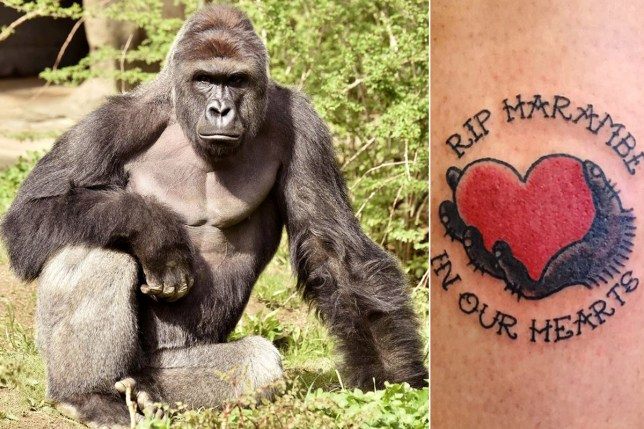 "This Woman Got A ""R.I.P Harambe"" Tattoo Because Of A Twitter Bet"