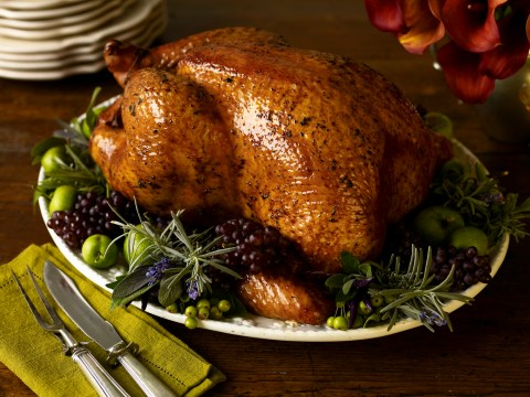 Gin turkey with botanical mash is everything this Thanksgiving
