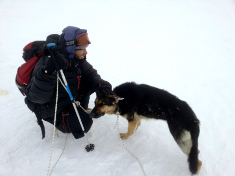 Climber scales Europe's highest mountain, finds lost dog at the top