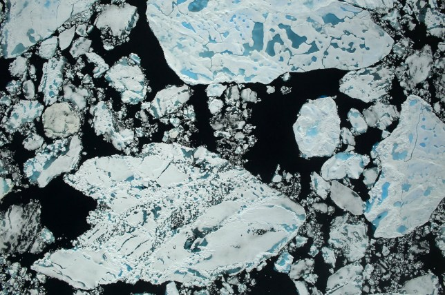 ***EMBARGOED UNTIL 2PM BST, WED SEP 14TH (13:00 GMT)*** An image of Arctic sea ice taken during an airborne survey of polar ice July 13-21, 2016, as part of NASA's Operation IceBridge. See National story NNPOLAR; Melting Arctic sea ice means polar bears will have ever shorter seasons to hunt and breed - threatening their very survival, warns new research. Polar bears are among the species most affected by the seasonal and year-to-year changes in Arctic sea ice, because they rely on this surface for essential activities such as hunting, travelling and breeding. A new study, with funding and satellite data from NASA, revealed a trend towards earlier sea ice melt in the spring and later ice growth in the autumn across all 19 polar bear populations. Conservationists say the trend will have a negative impact on the feeding and breeding capabilities of the bears.
