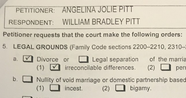A copy of papers filed at Los Angeles Superior Court by Angelina Jolie shows her petition for divorce from her husband Brad Pitt in Los Angeles, California, U.S. September 20, 2016. Jolie filed in Los Angeles Superior Court on Monday, citing irreconcilable differences as grounds for the split, court documents showed. REUTERS/Piya Sinha Roy TPX IMAGES OF THE DAY