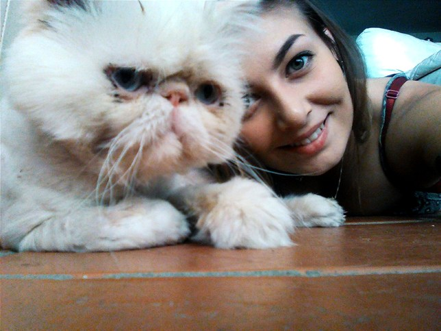 PIC BY LUCY WARE / CATERS NEWS - (PICTURED: Hodor the ugly cat with owner Lucy Ware, 23 from Redditch.) - A sour faced puss has finally found a loving new home - despite being hairless from the neck down. The grumpy looking moggy named Hodor was abandoned after he was struck down with a severe case of ringworm,Vets were left with no other option but to shave the Persian cats fur, leaving Hodor looking like a grumpy old man.. After seeing an online appeal, Lucy Ware, 23, from Redditch, couldnt resist Hodors gloomy face and went straight to pick him up from the shelter. SEE CATERS COPY.