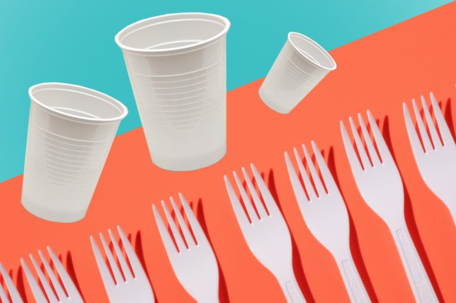 France bans plastic cups and cutlery