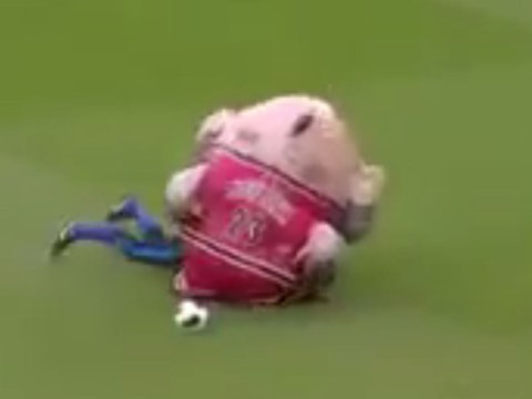 Fish mascot eats man and regurgitates him (minus clothes) in utterly bizarre Derby County half-time show