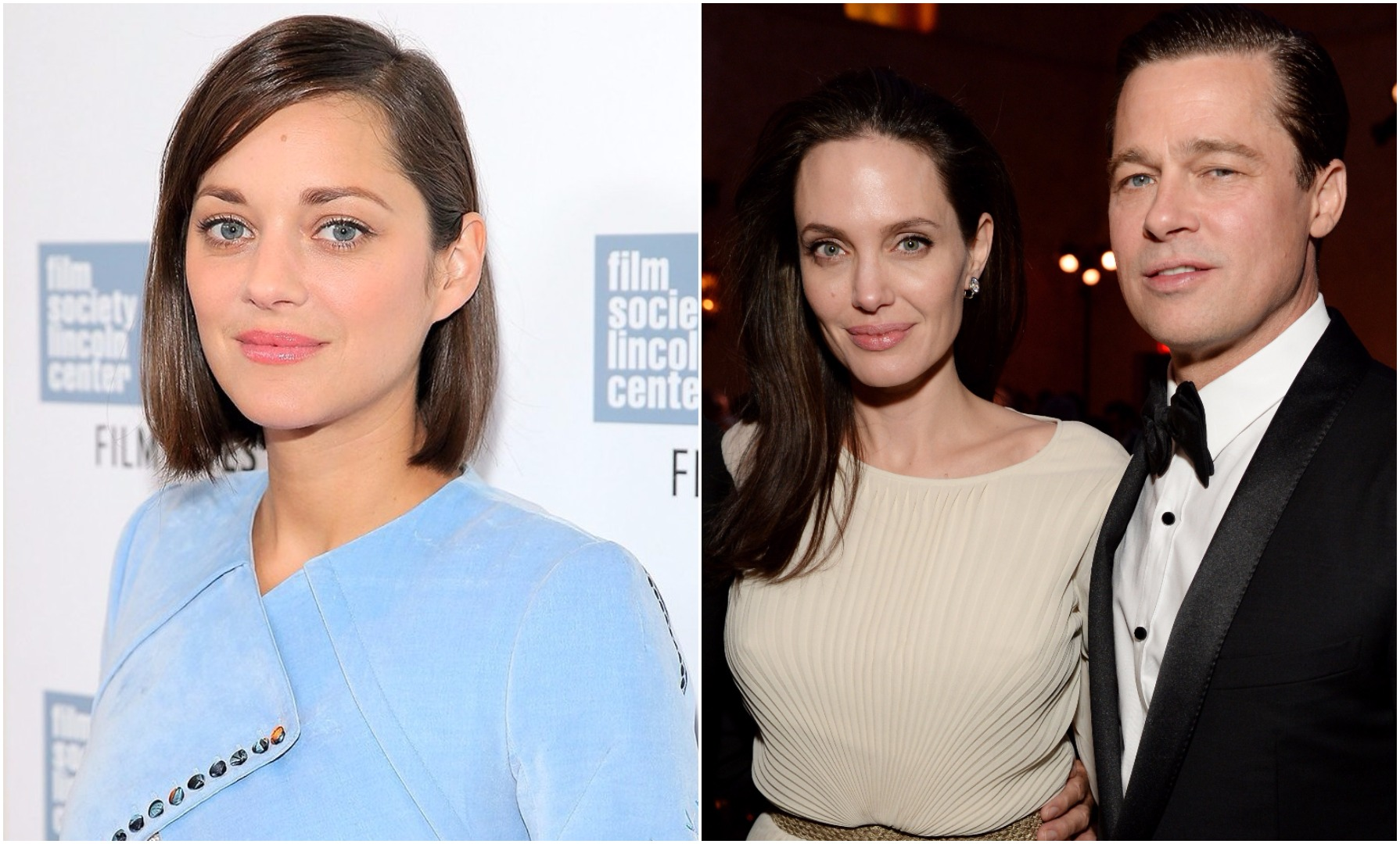 If you're prepared to believe Marion Cotillard would bother breaking up Brad Pitt and Angelina Jolie, shame on you