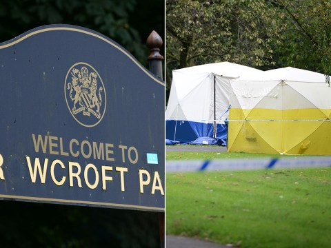 Girl, 12, 'raped' in Manchester park in late night attack